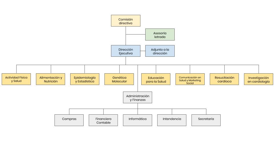 Estructura Comisión Honoraria Para La Salud Cardiovascular